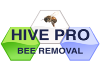 Hive Pro Bee Removal